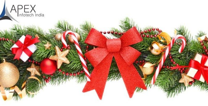 Christmas celebration Apex infotech india