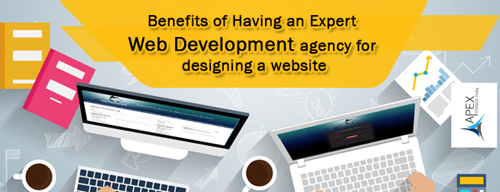 Benefits of Having an Expert Web Development agency for designing a website