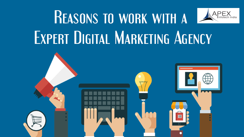 Reasons to work with an expert Digital Marketing Agency