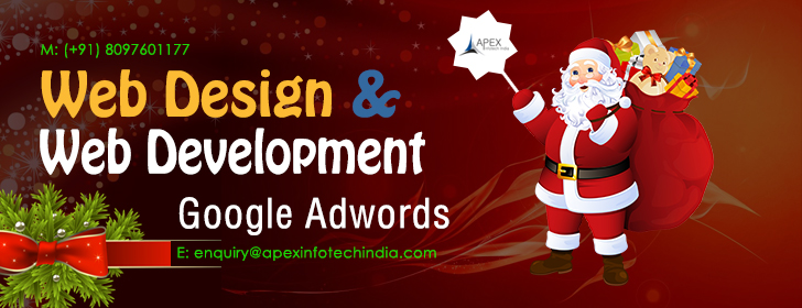 Apex InfoTech India Pvt. Ltd. Celebrating Christmas Festival 2018