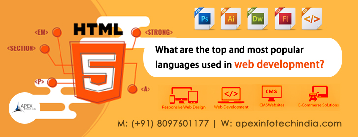 What are the top and most popular languages used in web development?